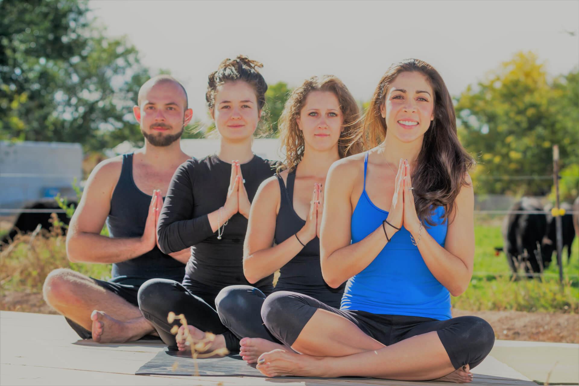 "oceandream yoga meditation ""the work"" retreat"